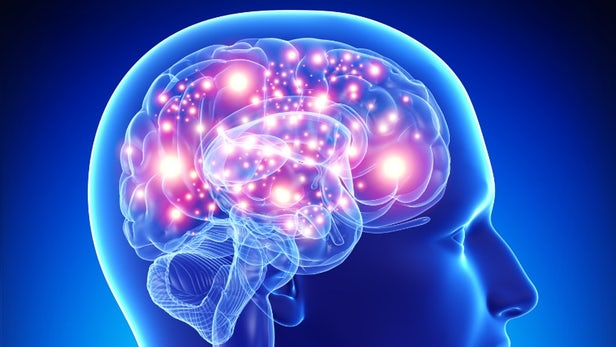 Researchers Find Prospective Contemporary Rx Target For AMD And Alzheimer's