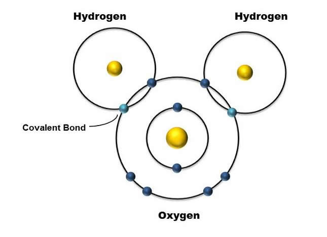 Promenading With Atoms Chemical Bond Producing And Interruption Recorded In Action